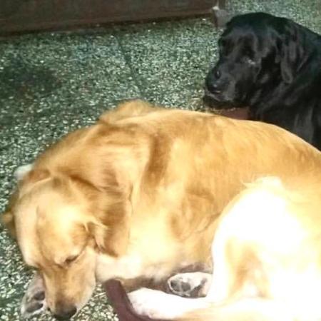Coco and Chotu